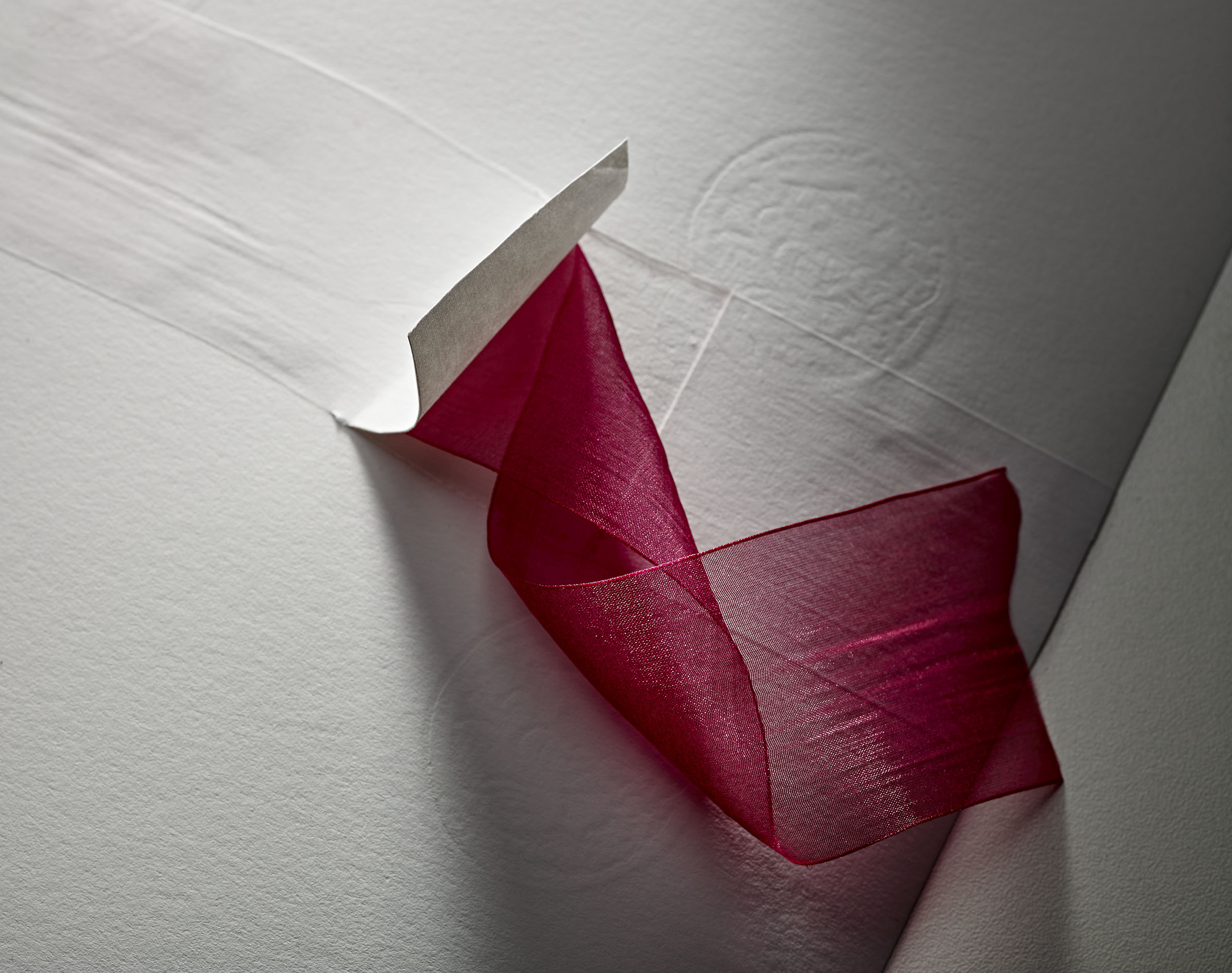 Lana ruban - organza rose-2